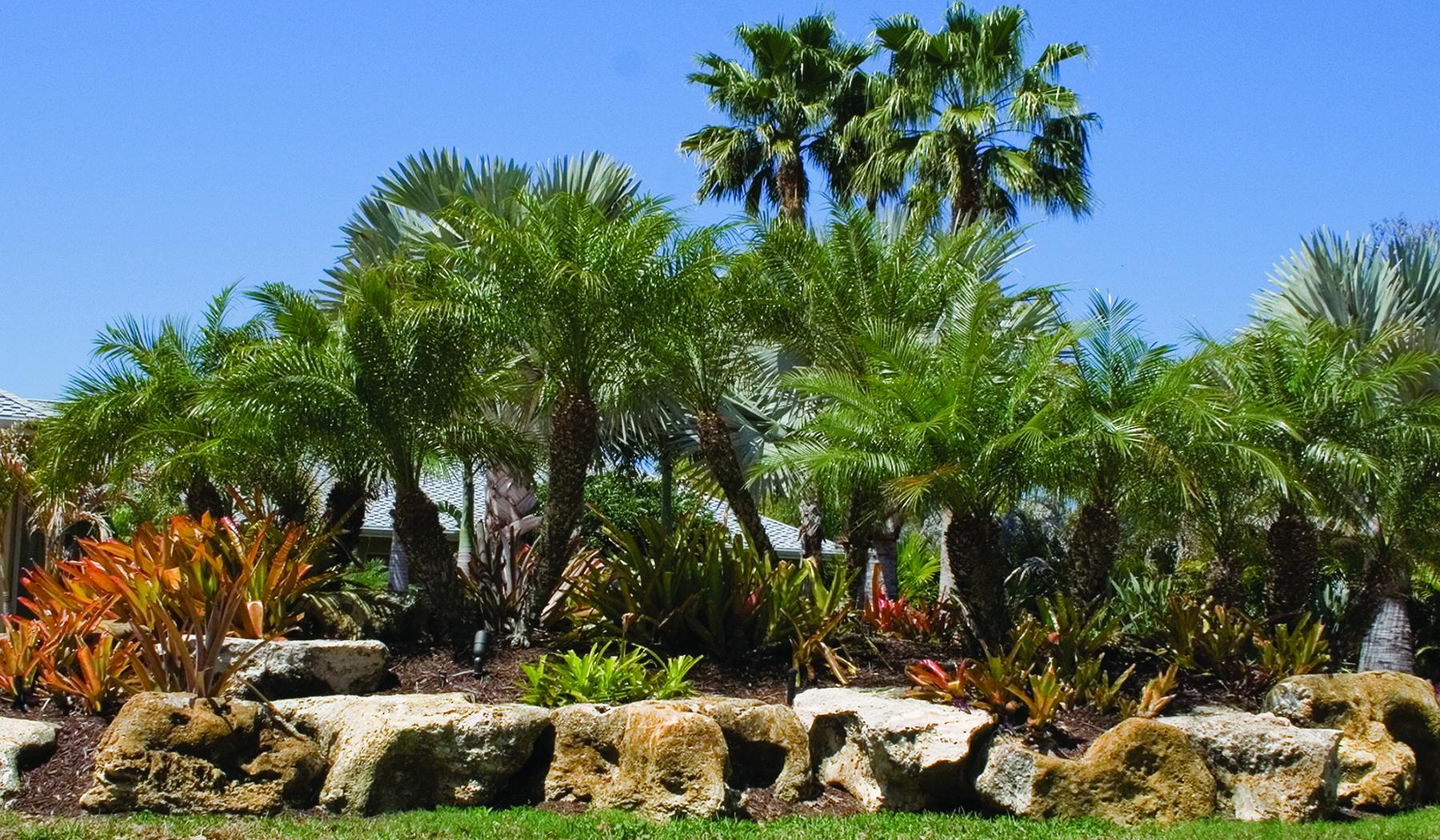 Landscape Berm Front Yard 1800 x 1050