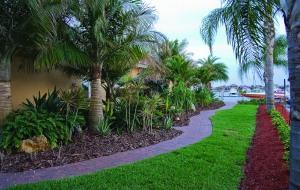 Side Yard Curving Path