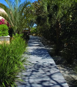 side yard path wooden bridge
